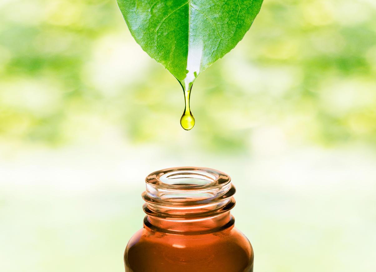 aphte de gencive l 39 huile essentielle de tea tree comme rem de medisite. Black Bedroom Furniture Sets. Home Design Ideas