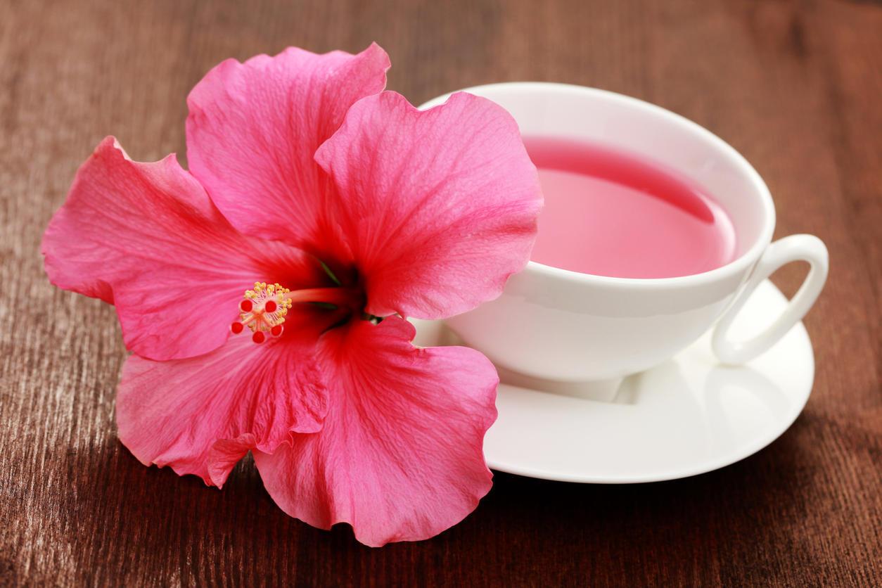 infusion minceur : une tisane d'hibiscus pour maigrir | medisite