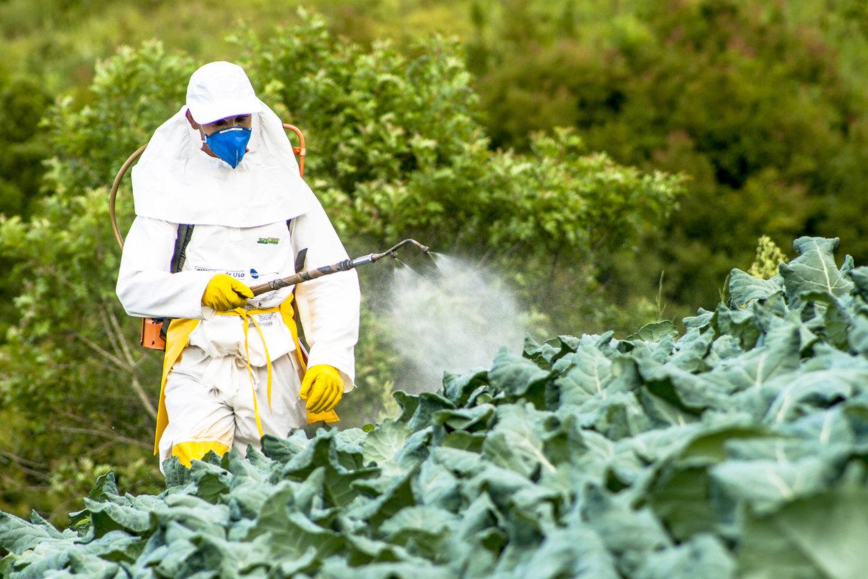 un pesticide présent sur les fruits et légumes responsable ?