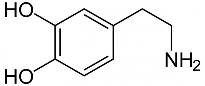 Photo : structure de la dopamine