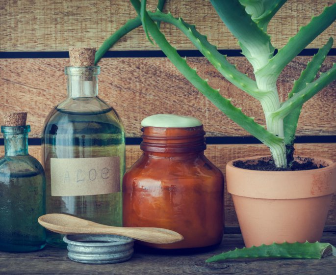 Aloe vera en gel ou en jus : la difference