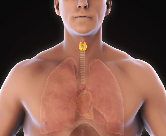 Nodule thyroidien chaud ou froid : la difference