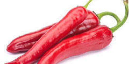 Le piment anti cancer de la prostate