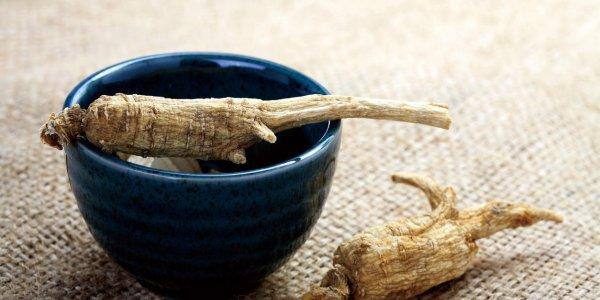 Ginseng : remède naturel contre fatigue, stress