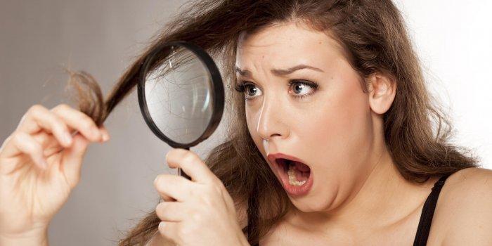 cheveux très secs