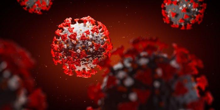 Covid-19 : il pourrait être 3 à 6 fois plus infectieux aujourd'hui !