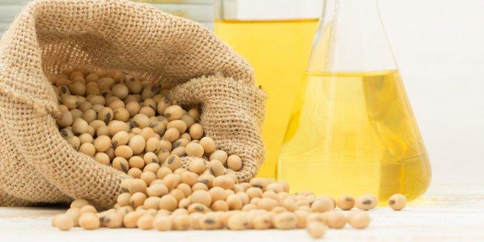 Alzheimer et Parkinson : l'huile de soja affecterait le cerveau