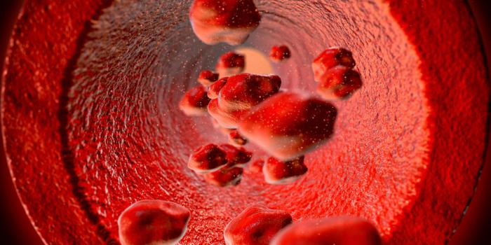 red blood cells flowing through the blood vessel