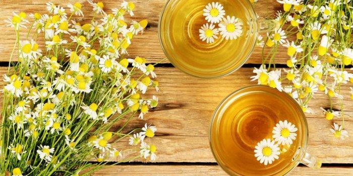 Tisane pour dormir : la fleur de camomille efficace contre l'insomnie ?