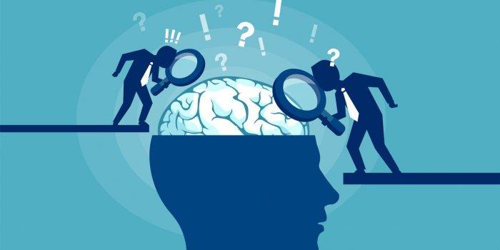 Découverte d'un possible nouvel organe au centre de notre tête
