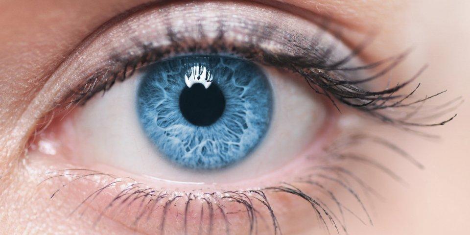 Herpès oculaire ou ophtalmique : symptômes, causes et traitements