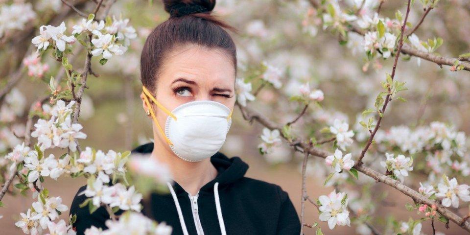 Covid-19 : le pollen contribue à sa saisonnalité