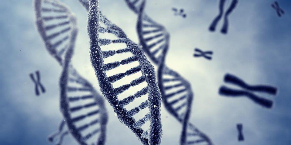 80% des personnes porteuses d'un gène cancérigène ne le savent pas