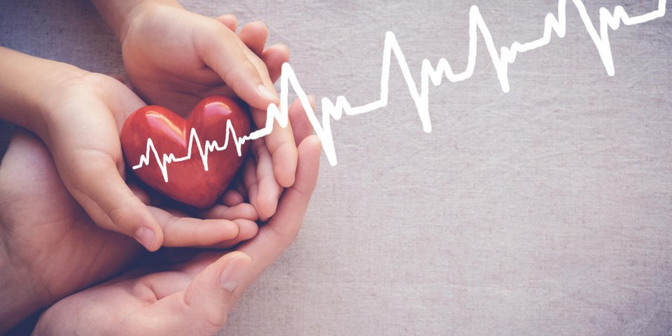 adult and child hands holiding red heart with cardiogram, health care love and family concept