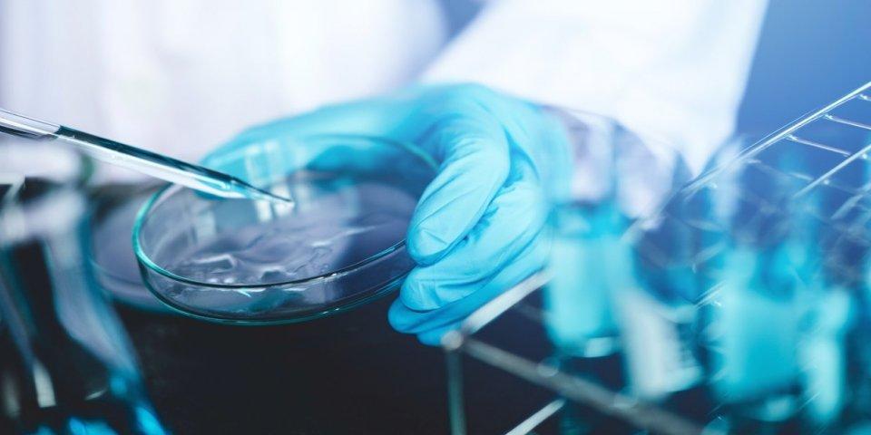 Coronavirus : l'ivermectine, nouvelle chloroquine ?
