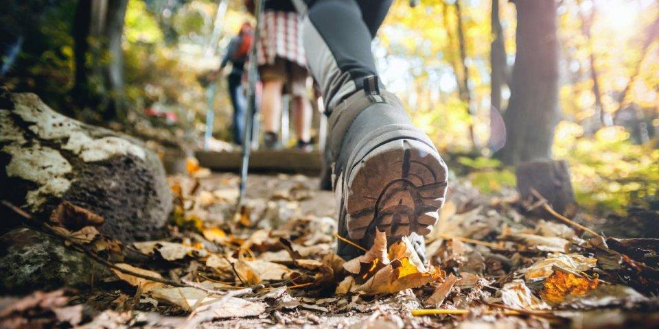 Marche ou course à pied : le corps s'adapte sans réfléchir