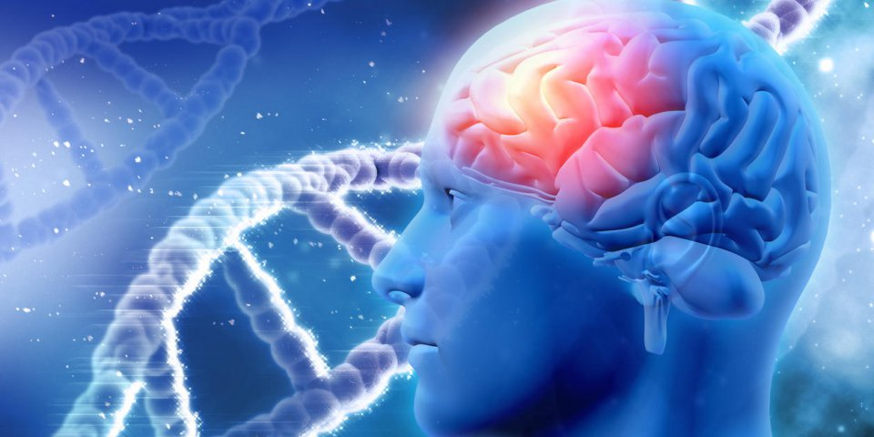 Parkinson : l'origine de la maladie découverte ?