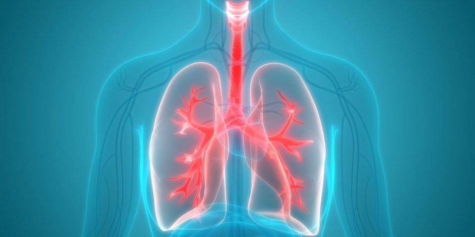 Quelle maladie provoque de l'eau dans les poumons ?