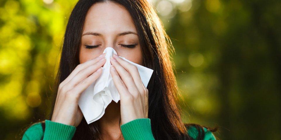 Quels sont les traitements homéopathiques en cas de rhinites allergiques ?