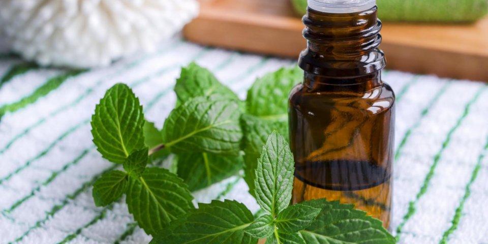 Comment soigner une sinusite avec des huiles essentielles ?