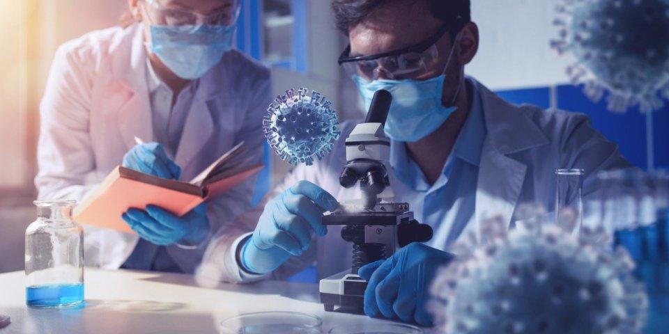 Le coronavirus a-t-il muté pour devenir moins dangereux ?