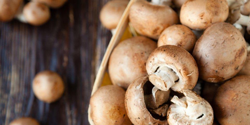 Cancer de la prostate : manger des champignons diminuerait le risque !