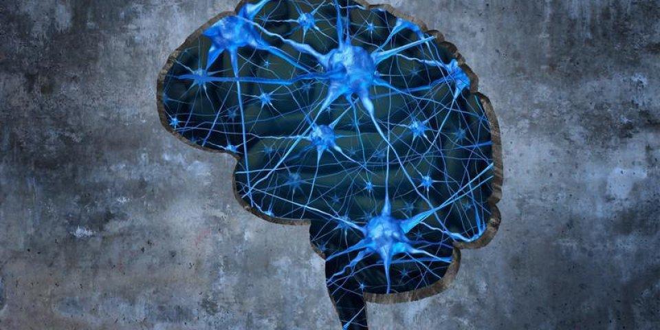 Syndrome d'Asperger et troubles du spectre de l'Autisme : définition, symptômes, traitements