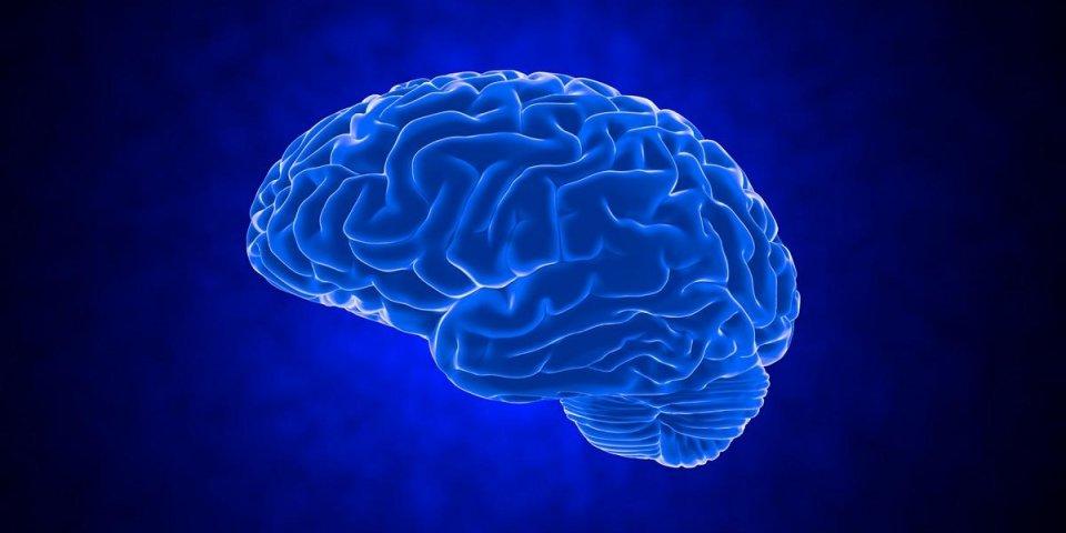 human brain on dark background 3d render