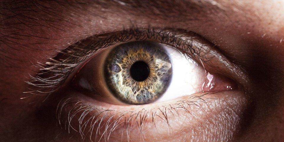 La taille des pupilles pourrait révéler votre intelligence