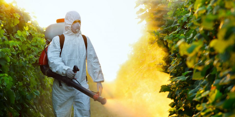 Les pesticides reconnus responsables de la maladie de Parkinson