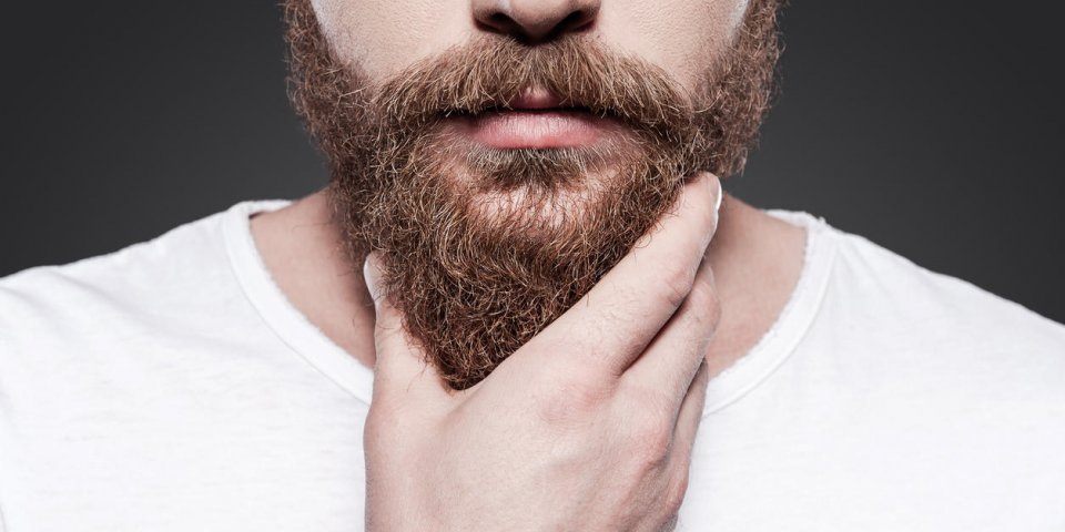 close-up of young bearded man touching his beard while standing against grey background
