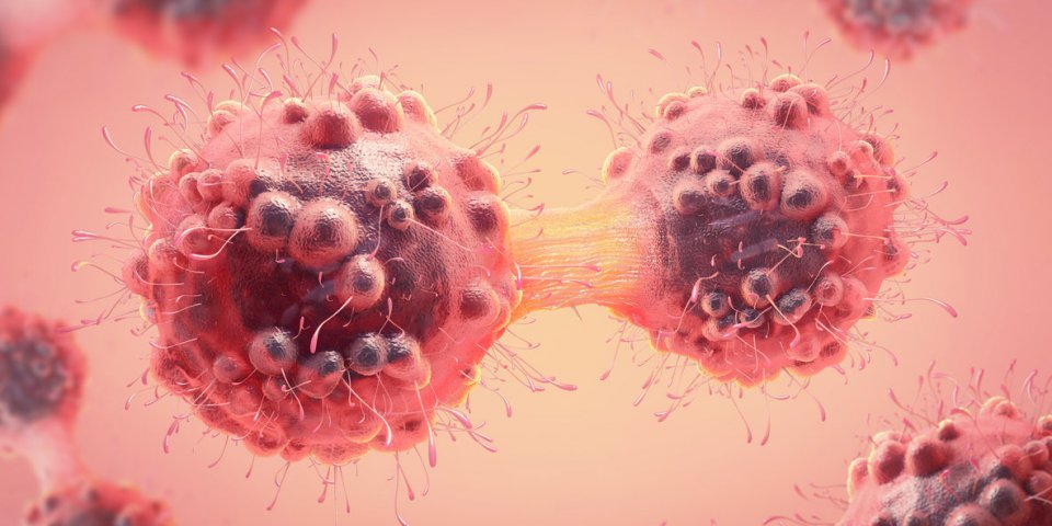 Lymphome à cellules du manteau : comment accéder aux essais cliniques ?