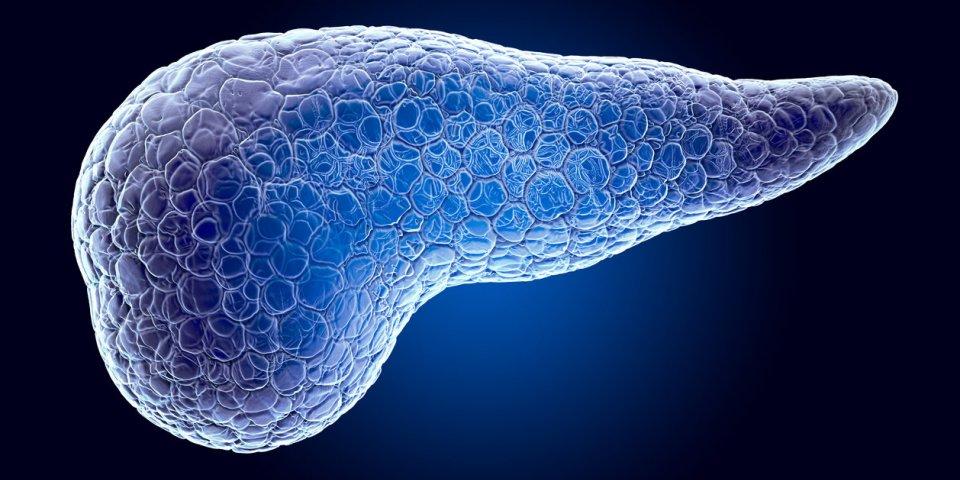 Diabète LADA, MODY, néonatal et de la mucoviscidose : les autres types de diabète