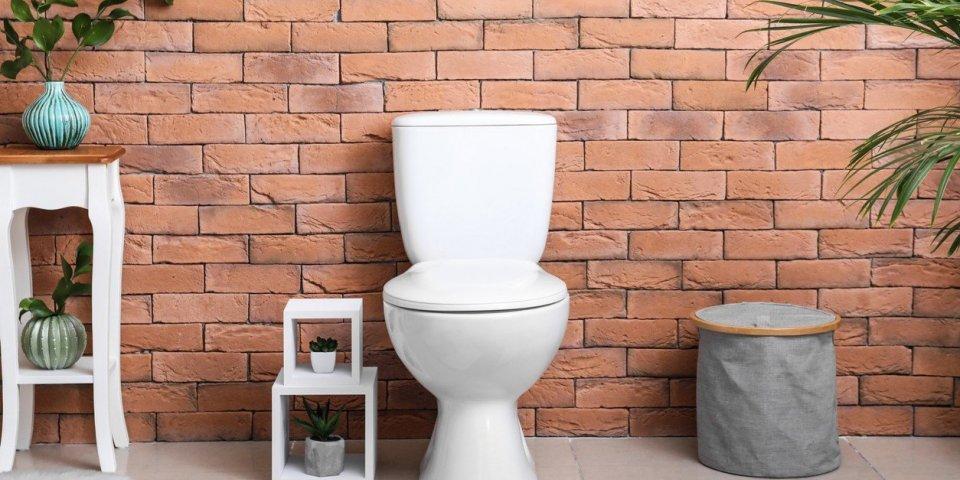 Toilettes : tirer la chasse sans baisser le couvercle propage les virus jusqu'à 90 cm