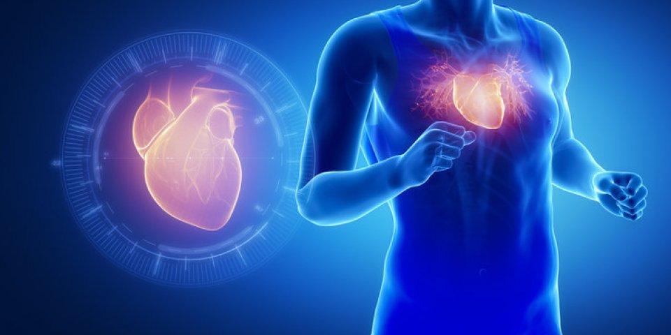Quelles activités physiques pratiquer sans danger après un infarctus ?