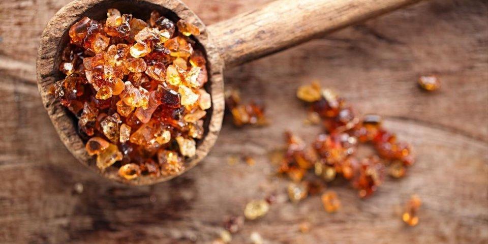 Gomme d'acacia : quels bienfaits santé ?
