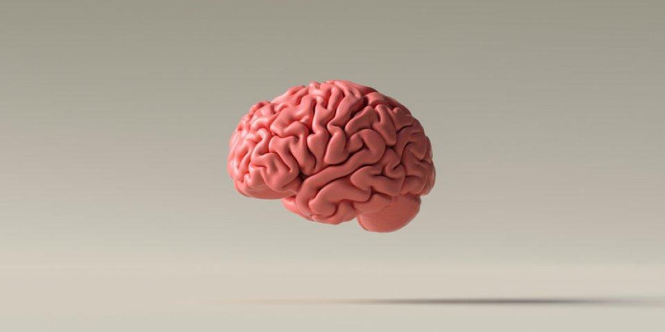 Covid-19 : pourquoi des chercheurs redoutent une vague d'Alzheimer dans 15 ans ?