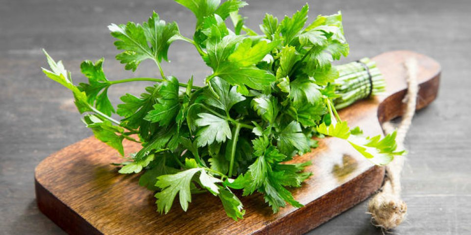 persil herbe culinaire sur une planche à découper en bois