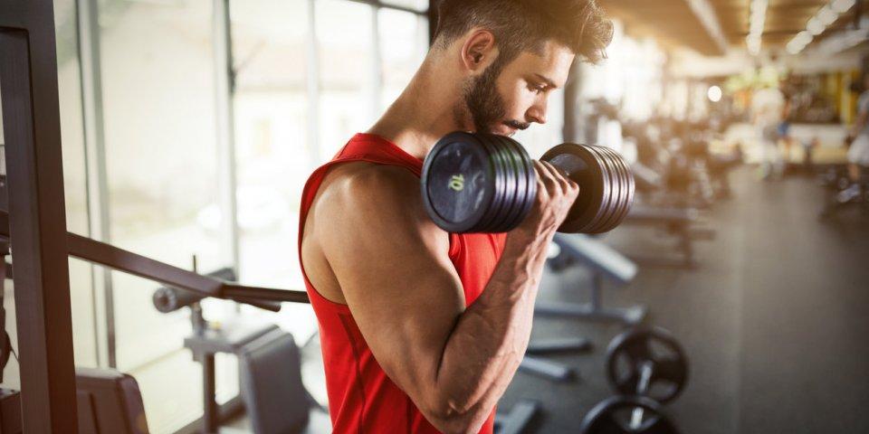 Les xéno-androgènes : la nouvelle tendance chez les amateurs de musculation