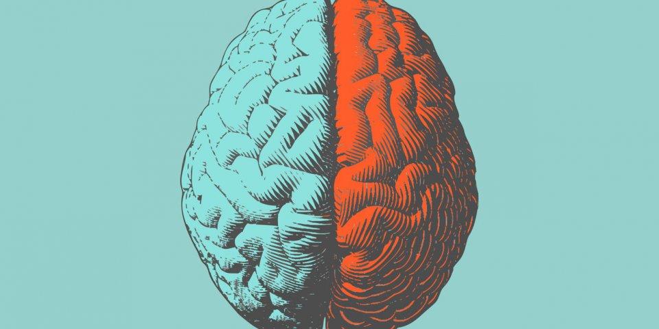 Covid-19 : et si le coronavirus s'attaquait à notre cerveau ?