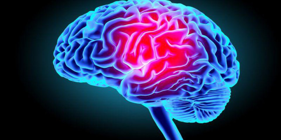 human brain isolated on dark background 3d render