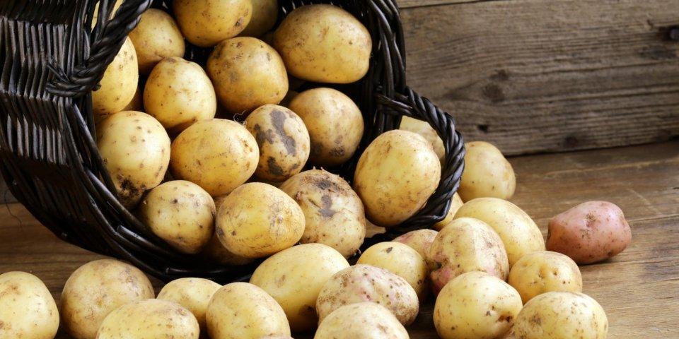 Se soigner avec la pomme de terre