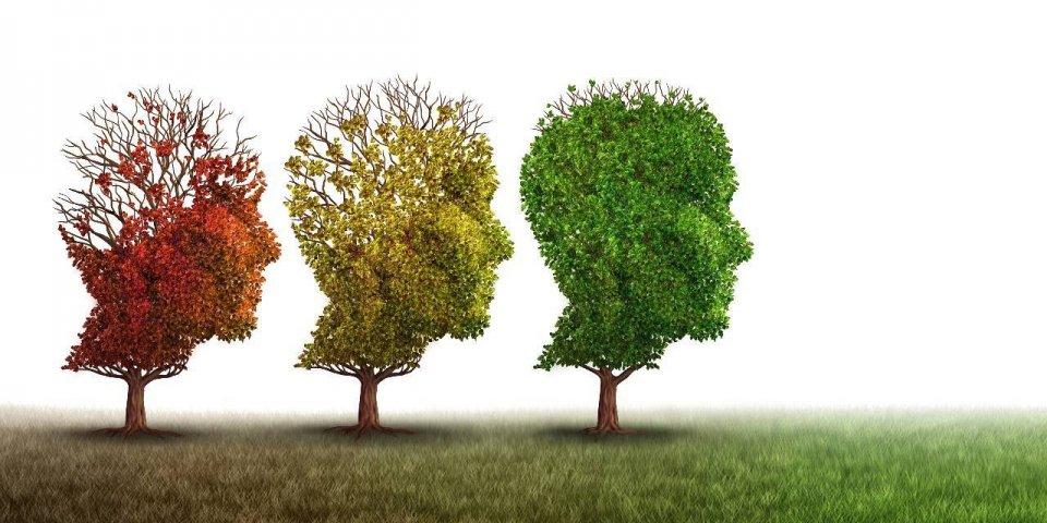 Alzheimer : 3 facteurs qui augmentent les risques de démence