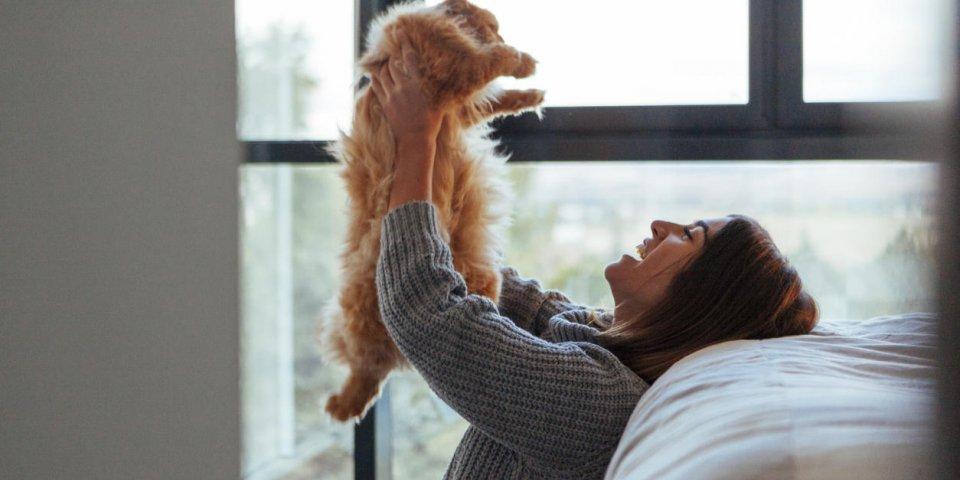 Maladie des griffes de chat : des complications graves