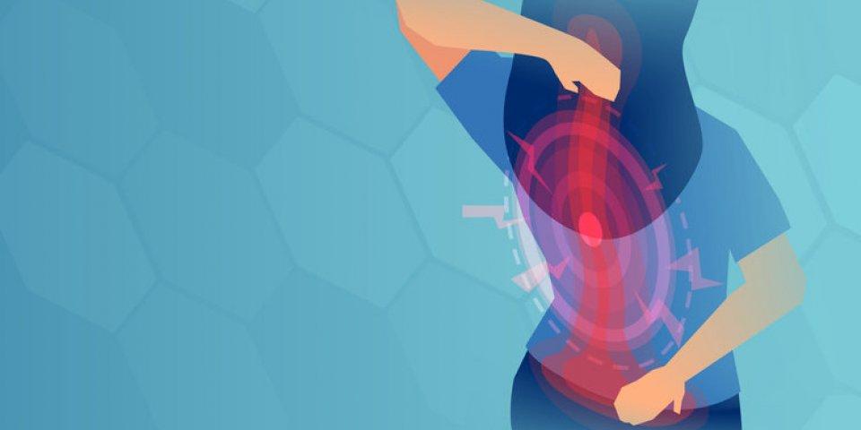 Quels sont les différents maux de dos ?