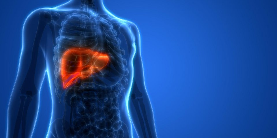 Cancer du foie : l'hépatite C peut le provoquer