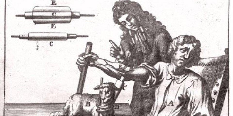 Transfusion sanguine chez l'homme : la folle histoire de sa mise au point