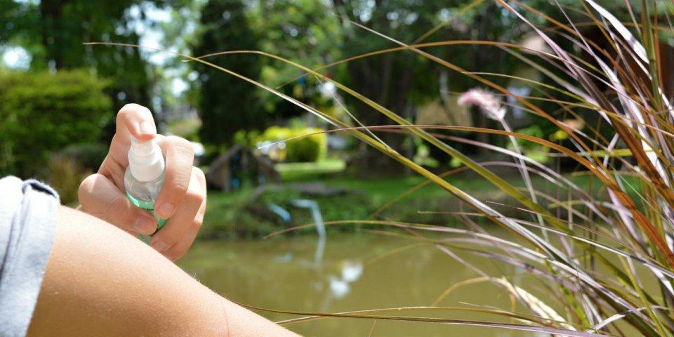 Piqûres de moustiques : le top des astuces pour que ça ne gratte plus !