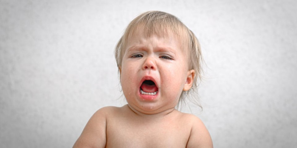 roaring crying screaming caucasian baby portrait with opened moutn