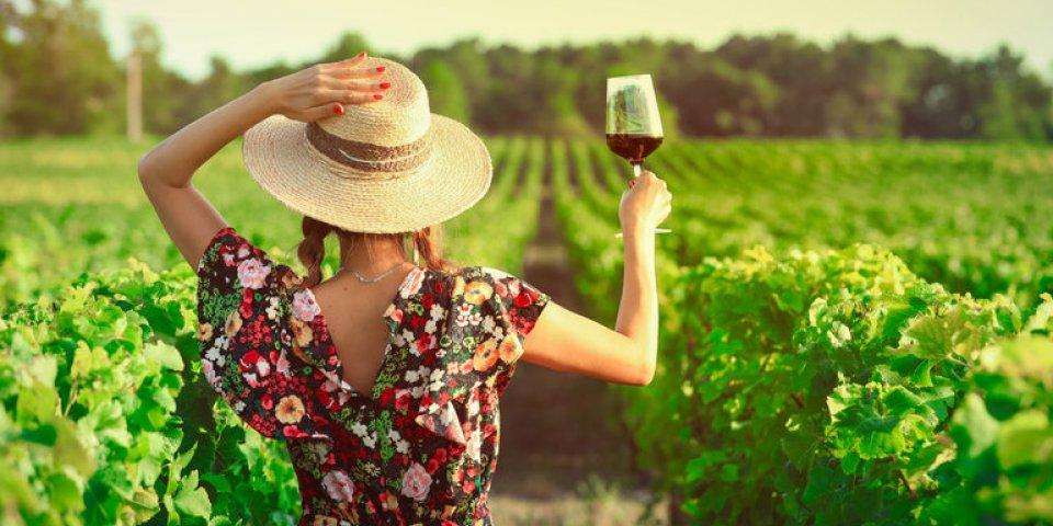 Les 10 commandements pour boire de l'alcool sans danger
